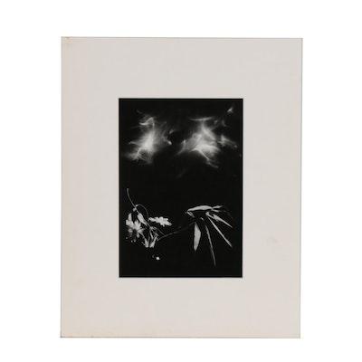 Merry Moor Winnett Silver Gelatin Photograph