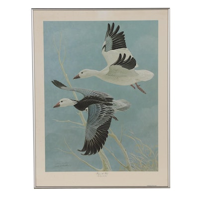 "John Ruthven Offset Lithograph ""Wings in the Wind"""