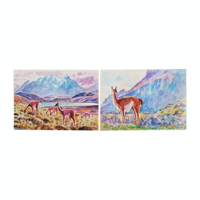 Watercolor Paintings of Guanacos