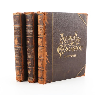 "1885 Popular Edition ""Animate Creation"" by Rev. J. G. Wood, Illustrated"