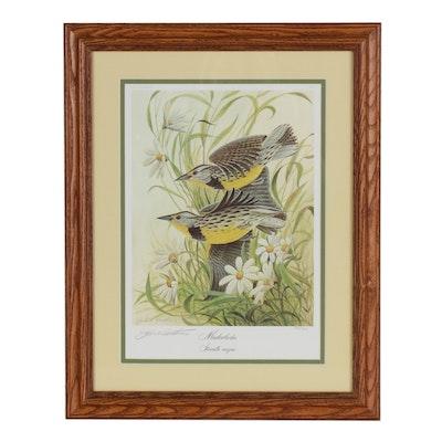 "John A. Ruthven Offset Lithograph ""Meadowlarks"""