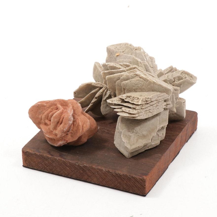 Gypsum Desert Rose Crystal Specimens with Wood Base