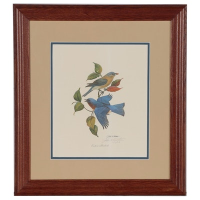 "John A. Ruthven Offset Lithograph ""Eastern Bluebirds"""