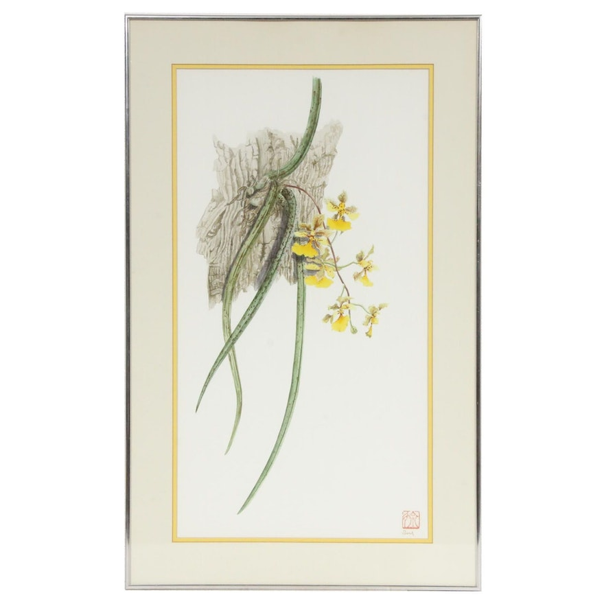 """Patricia Surh O'Connell Watercolor Painting """"Oncidium"""""""