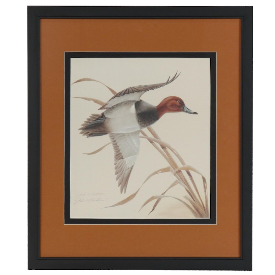 John Ruthven Offset Lithograph of Duck in Flight