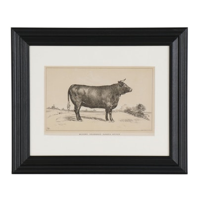 Lithograph from U.S. Consular Reports. Cattle and Dairy, 1888