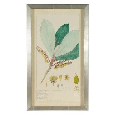 """Offset Lithograph after Alexandre Descubes """"Botanical I"""""""