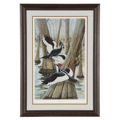 "John Ruthven Offset Lithograph ""Ivory-billed Woodpecker"""