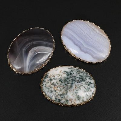Framed Oval Agate Cabochon Mineral Specimens