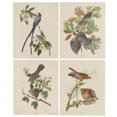 After John J. Audubon Northwestern Mutual 'Deeptone' Offset Lithographs