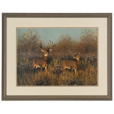 White-tailed Deer Landscape Offset Lithograph