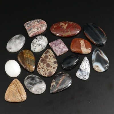 Loose 476.14 CTW Mixed Gemstones Including Tiger's Eye, Agate, and Jasper