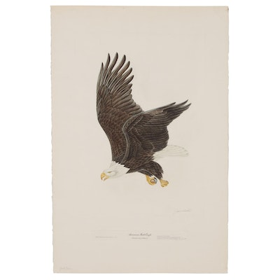 "John Ruthven Hand-colored Aquatint Etching ""American Bald Eagle"""