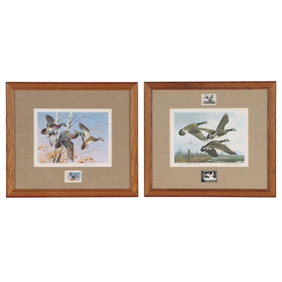 Michael Sieve Offset Lithographs with Waterfowl Stamps