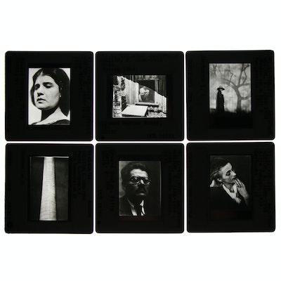 Photographic Slides after Edward Weston