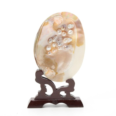Shell Specimen with Blister Pearls and Carved Wood Stand