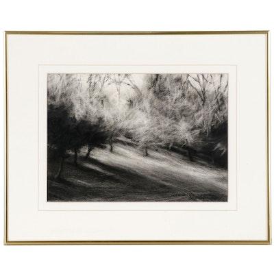 M. Katherine Hurley Pastel Landscape Drawing