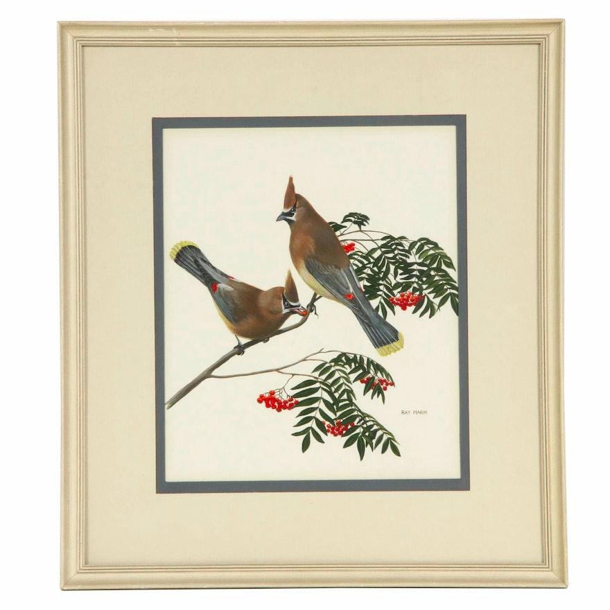 Ray Harm Gouache Painting of Cedar Waxwing Birds