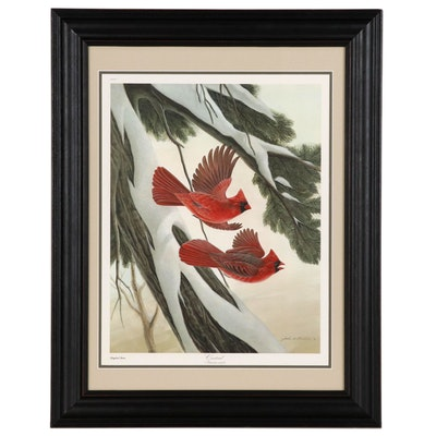 "Offset Lithograph After John Ruthven ""Cardinal"""