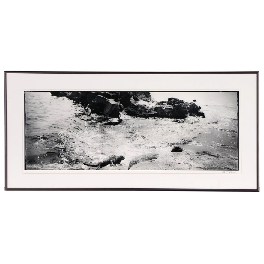 Digital Print of Seascape with Iguana