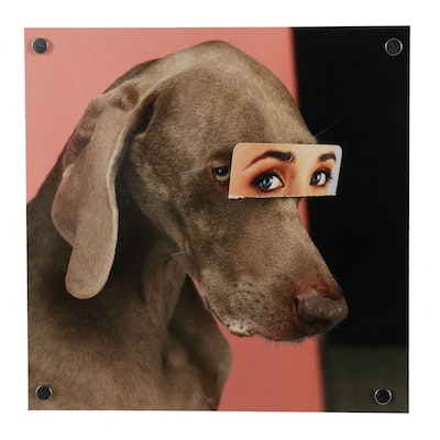 "William Wegman Color Photograph ""False Eyes"", 2019"