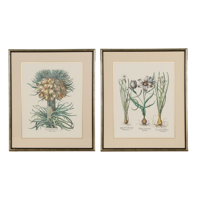 Hand-Colored Lithographs of Flowers