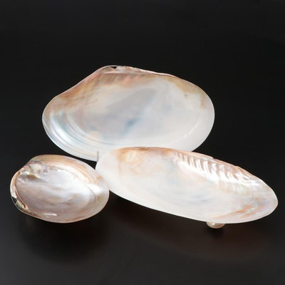 Three Footed Shell Dishes
