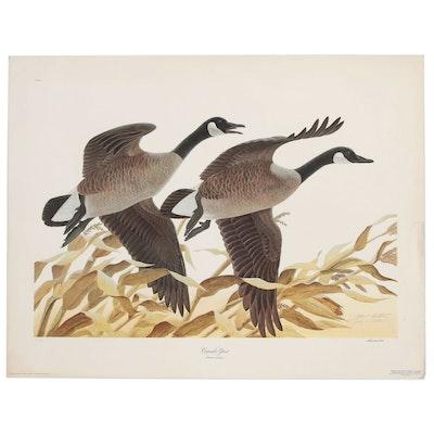 """John A. Ruthven Offset Lithograph """"Canada Geese"""", 1975"""