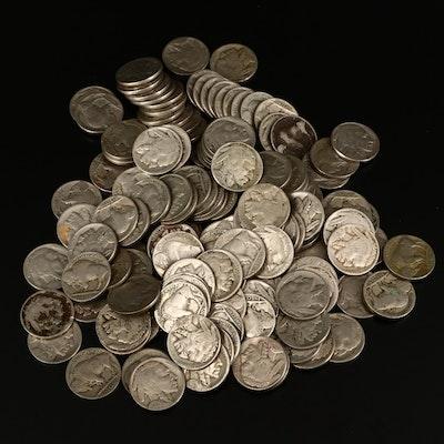 146 Buffalo Nickels