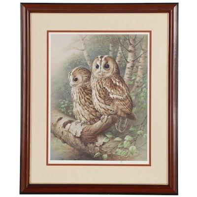 "Raymond Watson Collotype Print ""Tawny Owl"" 1984"