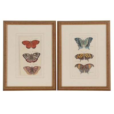 Pair of Hand Colored Entomological Lithographs, Late 19th Century