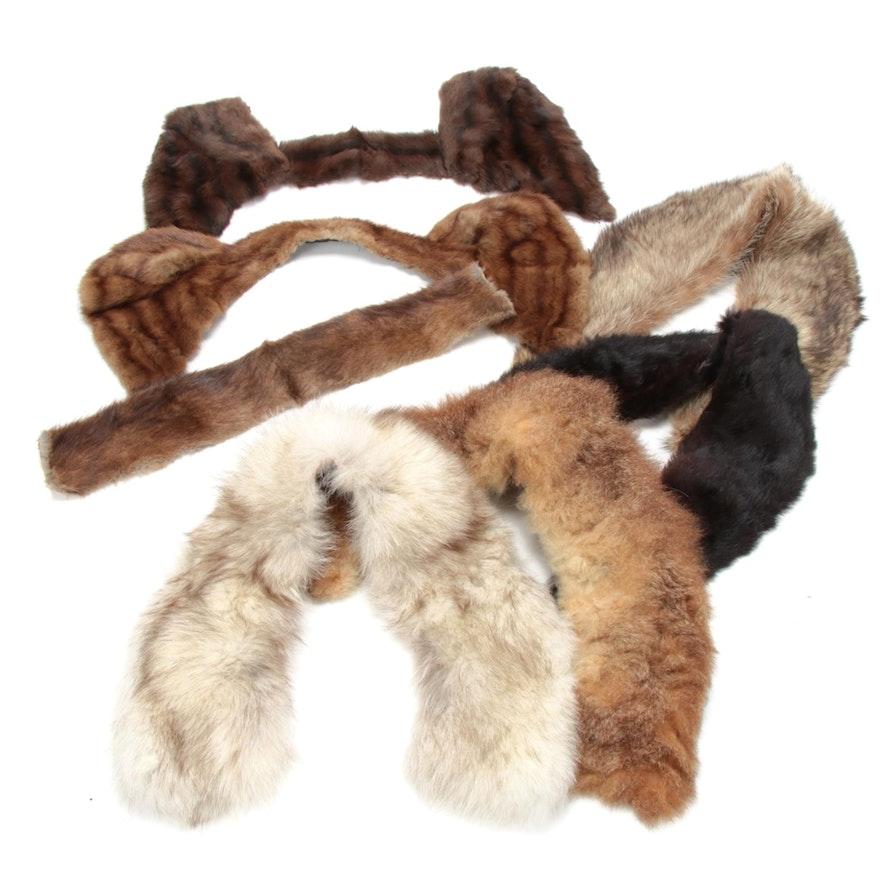 Fur Collars Including Fox, Rabbit, Mukrat and Beaver Fur, Vintage