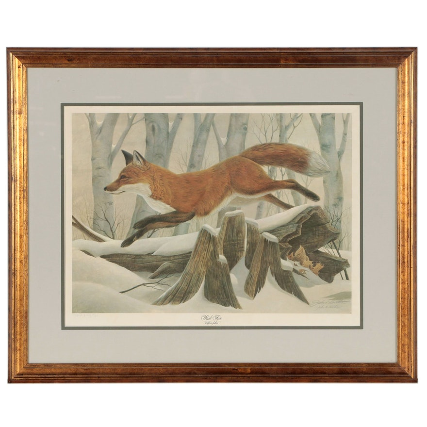 """John A. Ruthven Offset Lithograph """"Red Fox"""", Late 20th Century"""