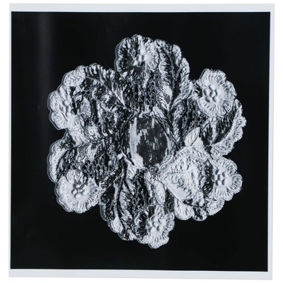 Karen Savage Life-Size Photogram of Lace