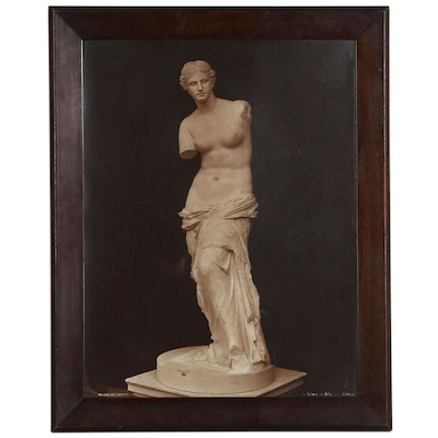 "Albumen Photograph ""Venus de Milo"", Late 19th Century"