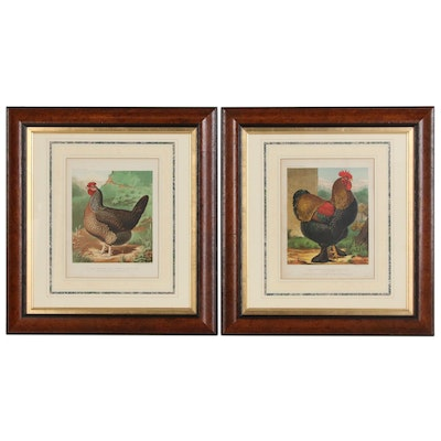"""J.W. Ludlow Chromolithographs from """"The Illustrated Book of Poultry"""", 1890"""