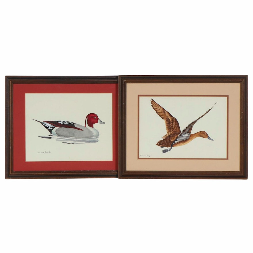 Conrad Swails Watercolor and Gouache Paintings of Ducks, Late 20th Century