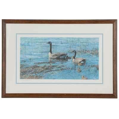 "George McLean Limited Edition Offset Lithograph ""Canada Goose and Gosling"""