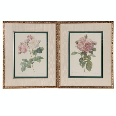 "Pair of Botany Offset Lithographs after Engraving ""Rosa"", Late 20th Century"