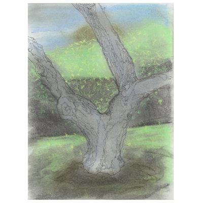 Peter Rappoli Mixed Media Drawing of Tree, 2010
