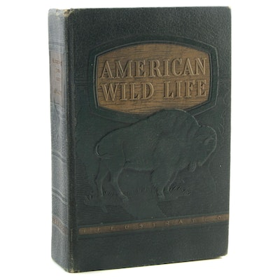 "1940 ""American Wild Life Illustrated"" Compiled by the WPA"