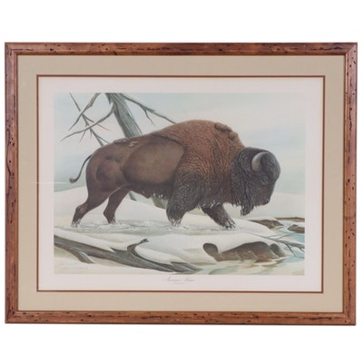"John A. Ruthven Offset Lithograph ""American Bison"", Late 20th Century"