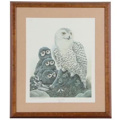 """John Ruthven Offset Lithograph """"Snowy Owls"""""""
