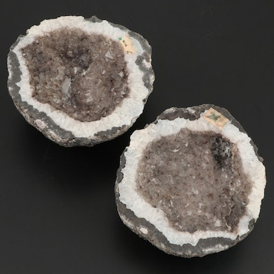 Prismatic Smoky Quartz in Coarse Crystalline Quartz Geode Halves