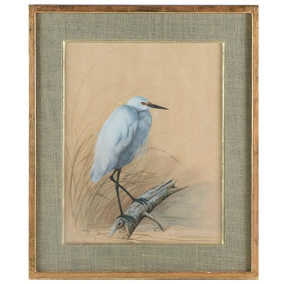 White Heron Watercolor and Gouache Painting, 1885