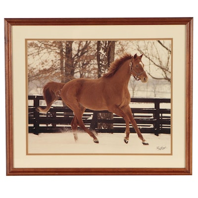 "Tony Leonard Chromogenic Color Equine Photograph ""Affirmed in the Snow"", 1987"