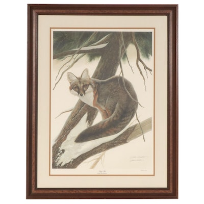 "John A. Ruthven Offset Lithograph ""Gray Fox"", Late 20th Century"