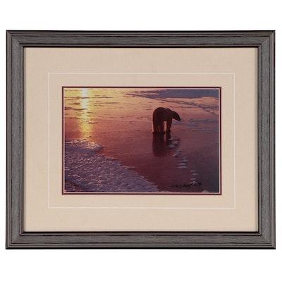 Thomas D. Mangelsen Digital Photograph Polar Bear at Sunrise, 1989