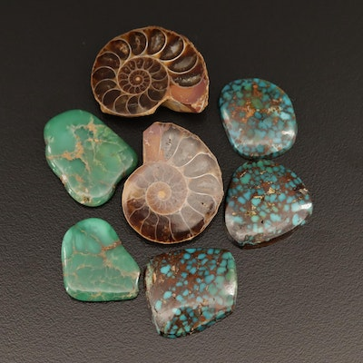 Loose 127.26 CTW Turquoise, Variscite and Ammonite