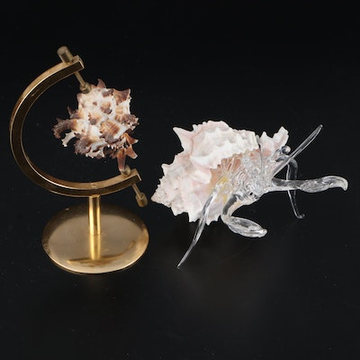 Art Glass Hermit Crab and Other Seashell Decor